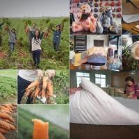 台南市休閒旅遊 景點 觀光工廠 和明織品文化館 照片