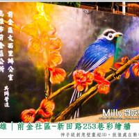 高雄市休閒旅遊 景點 景點其他 前金社區-新田路253巷彩繪牆 照片