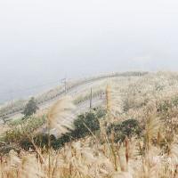新北市休閒旅遊 景點 景點其他 五分山氣象雷達站 照片