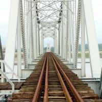 高雄市休閒旅遊 景點 公園 舊鐵橋濕地生態公園 照片