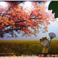 Shirley Huang在走進花生漫畫: Snoopy 65週年巡迴特展台北場 pic_id=1294819