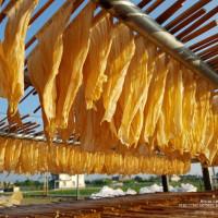 高雄市休閒旅遊 景點 景點其他 美濃(宋)豆皮工廠 照片