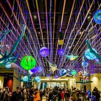 台北市休閒旅遊 景點 車站 南港車站 照片
