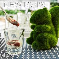 台南市美食 餐廳 飲料、甜品 冰淇淋、優格店 NEWTON'S 優格 輕食 冰淇淋 照片