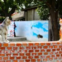 雲林縣休閒旅遊 景點 景點其他 頂溪彩繪社區 照片