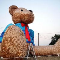 台中市休閒旅遊 景點 景點其他 迷路小熊 地景藝術節 照片