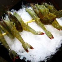 新北市美食 餐廳 火鍋 涮涮鍋 二木坊日式涮涮鍋火鍋店 照片