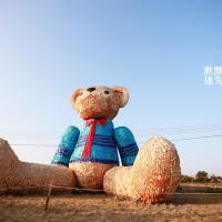 台中市休閒旅遊 景點 展覽館 台中地景藝術節 照片
