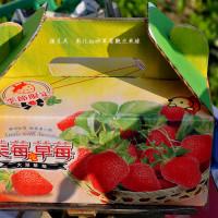 彰化縣休閒旅遊 景點 觀光果園 彰化虹妤草莓觀光果緣 照片