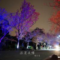 台北市休閒旅遊 景點 景點其他 北投復興三路櫻花隧道「夜櫻計劃」 照片