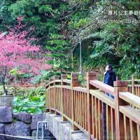 台北市休閒旅遊 景點 古蹟寺廟 上清宮 照片