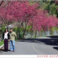 南投縣休閒旅遊 景點 景點其他 信義東埔風景區 照片