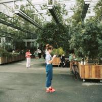 宜蘭縣休閒旅遊 景點 觀光花園 香草菲菲芳香植物博物館 照片