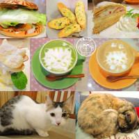 新竹市美食 餐廳 咖啡、茶 歐式茶館 晴空貓窩 照片