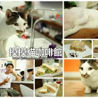 新北市美食 餐廳 飲料、甜品 飲料、甜品其他 摸摸貓咖啡館 照片