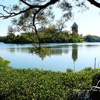 新竹縣休閒旅遊 景點 景點其他 細茅埔吊橋 照片