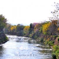 台中市休閒旅遊 景點 公園 潮洋公園 照片