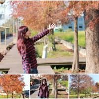 台中市休閒旅遊 景點 景點其他 東豐鐵馬道 照片
