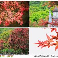 台北市休閒旅遊 景點 景點其他 台北奧萬大 2 照片