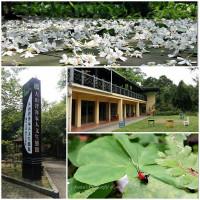 新竹縣休閒旅遊 景點 景點其他 大山背客家人文生態館 照片