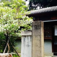 台中市休閒旅遊 景點 公園 台中文學館 照片
