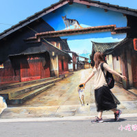 嘉義縣休閒旅遊 景點 景點其他 民雄菁埔社區貓彩繪 照片