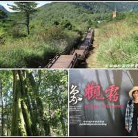新竹縣休閒旅遊 景點 森林遊樂區 觀霧國家森林遊樂區 照片