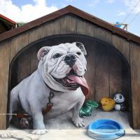 彰化縣休閒旅遊 景點 景點其他 長安國小 3D立體彩繪牆 照片