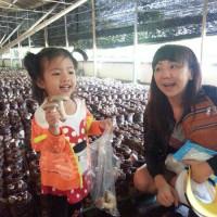 台中市休閒旅遊 景點 觀光農場 阿亮香菇園 照片