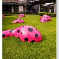 台中市休閒旅遊 景點 美術館 夢我所夢:草間彌生亞洲巡迴展台中站 照片