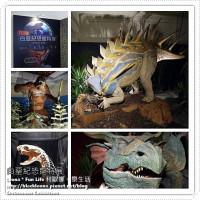 台北市休閒旅遊 景點 展覽館 白堊紀恐龍特展 照片