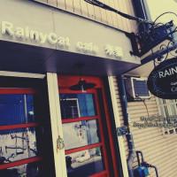 台中市美食 餐廳 咖啡、茶 咖啡館 Rainycat cafe 米貓咖啡 照片