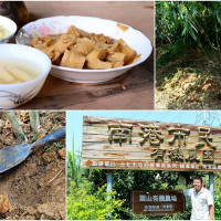 台北市休閒旅遊 景點 觀光農場 麗山有機農場 照片