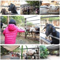 台中市休閒旅遊 景點 動物園 益健乳羊牧場 照片