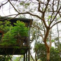 台南市休閒旅遊 景點 景點其他 五號樹屋 照片