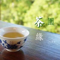台北市休閒旅遊 景點 觀光茶園 台北市鐵觀音包種茶研發推廣中心 照片