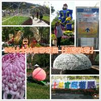 台北市休閒旅遊 景點 公園 2015士林官邸菊展「嬉遊秋菊」 照片
