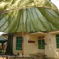 屏東縣休閒旅遊 景點 景點其他 勝利文創園區 照片