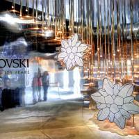 台北市休閒旅遊 購物娛樂 設計師品牌 施華洛世奇品牌120週年 X apbs®施華洛世奇展覽 照片