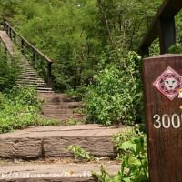 屏東縣休閒旅遊 景點 景點其他 卡悠峯瀑布 照片