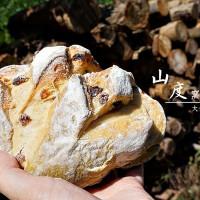 苗栗縣美食 餐廳 烘焙 麵包坊 山度窯烤麵包 照片
