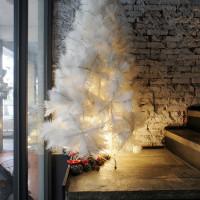 高雄市美食 餐廳 異國料理 義式料理 金‧卡蓮西亞 照片