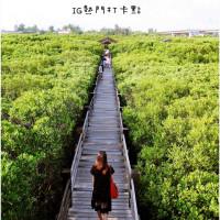 新竹縣休閒旅遊 景點 公園 新豐紅樹林生態保護區 照片