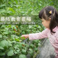 宜蘭縣休閒旅遊 景點 觀光果園 藤結教育農場 照片
