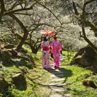 南投縣休閒旅遊 景點 觀光花園 烏松崙森林渡假營 照片