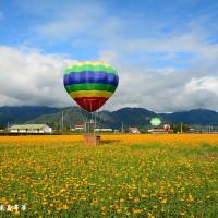 宜蘭縣休閒旅遊 景點 觀光花園 三星花海汽球嘉年華 照片