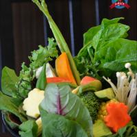台南市美食 餐廳 火鍋 涮涮鍋 郭家の鍋 照片