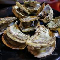 桃園市美食 餐廳 異國料理 日式料理 第一菁 東石烤鮮蚵 照片