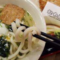 新竹市美食 餐廳 異國料理 日式料理 Tamoya太盛16烏龍麵(新竹清大店) 照片