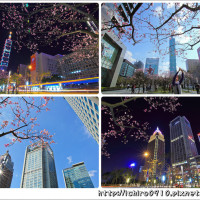 台北市休閒旅遊 景點 景點其他 華新麗華花旗銀行 照片